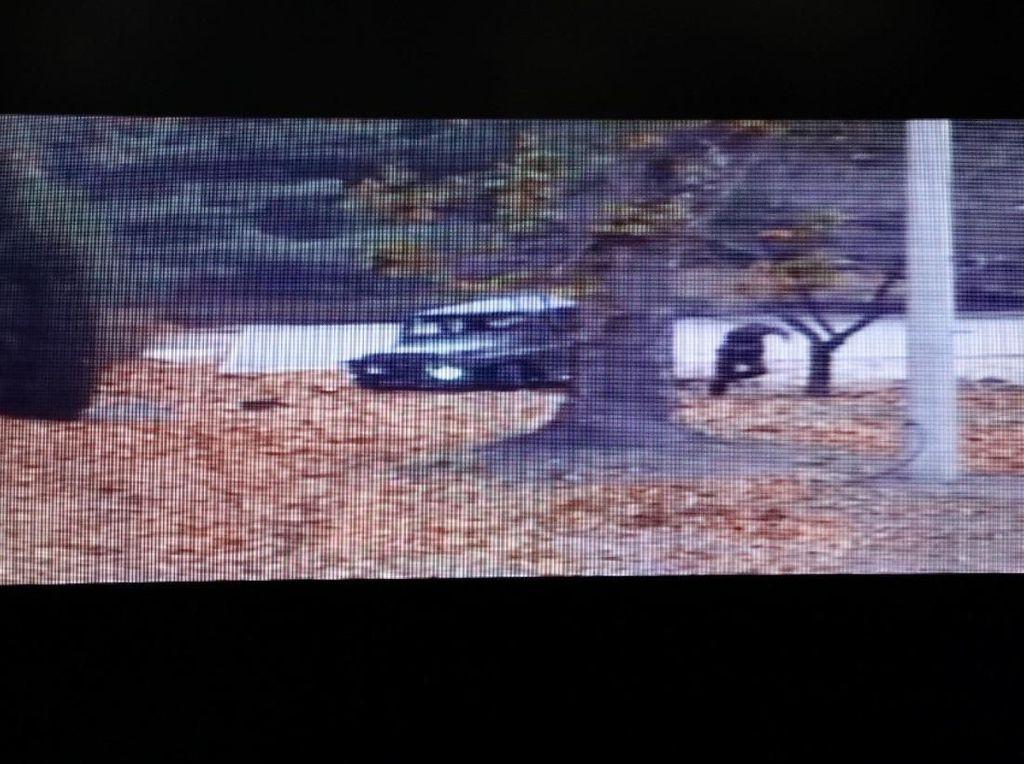 Gambar CCTV Ini Ungkap Momen Dramatis Pelarian Tentara Korut Pembelot