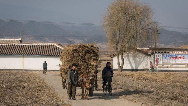 Korut masih berutang US$4 juta (sekitar Rp58.3 miliar) kepada badan PBB untuk pengembangan pertanian, IFAD.