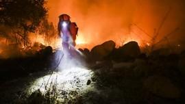 5 Kota di Oregon Hancur akibat Karhutla