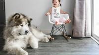 <div>Gadis cilik ini bernama Banksii dan anjingnya bernama Utah. (Foto: Instagram @malamutecalledutah)</div>