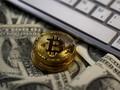 Waspada 'Bubble', Bitcoin Rontok 20% dalam Hitungan Hari