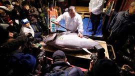 Pasar Ikan Tsukiji Larang Turis Datang
