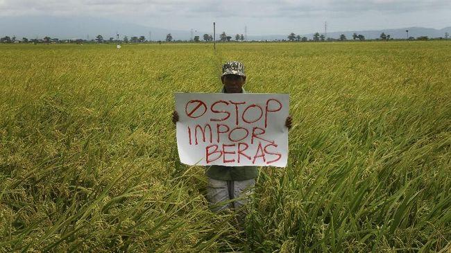 Politikus PKB Luluk Hamidah menyebut sejumlah data menunjukkan bahwa Indonesia tidak kekurangan stok pangan dan tak perlu impor beras.