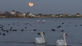 BMKG: Waspadai Air Pasang Saat Gerhana Bulan Total
