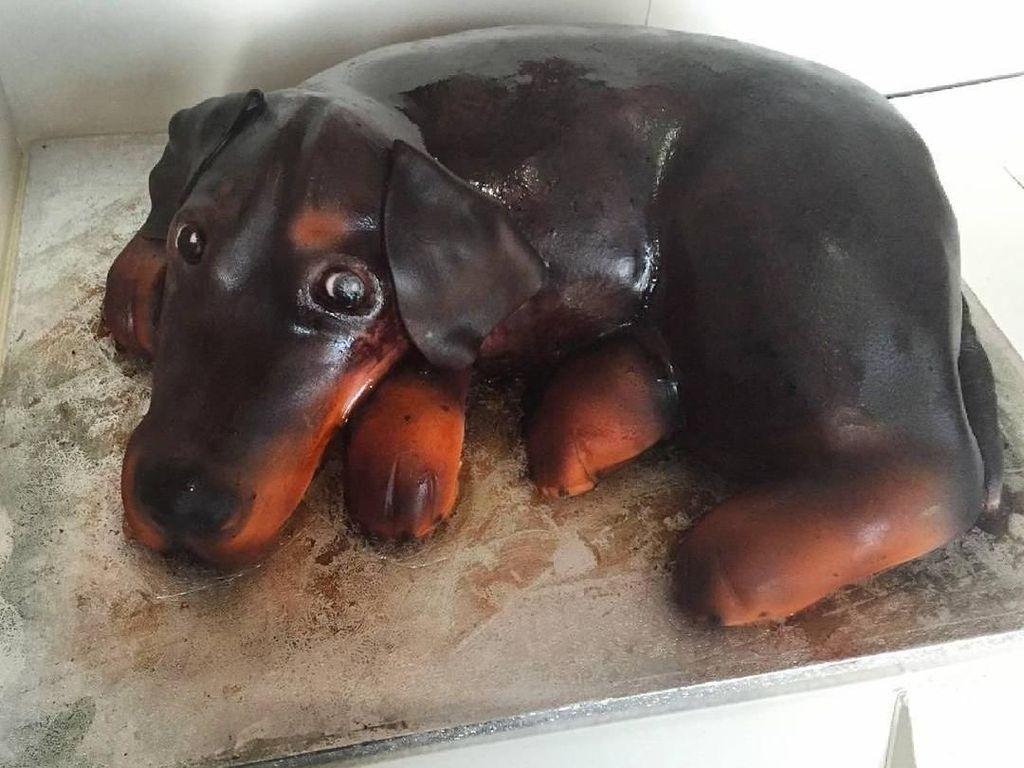 Duh, gemesin banget deh ini. Ini bukan anjing beneran, ya. Ngapain anjing main main di atas loyang kue. Foto: Instagram