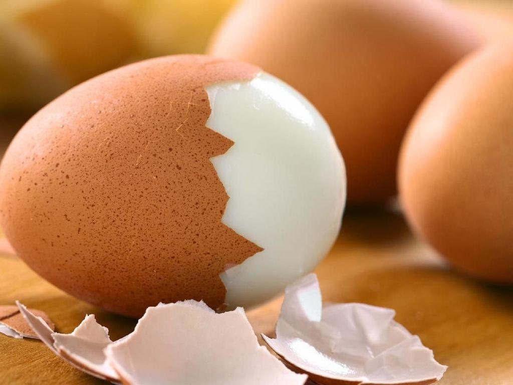 Agar mudah dikupas, pilihlah telur yang lsudah berumur beberapa hari. Karena jenis telur ini paling baik untuk direbus. Telur yang baru lcenderung ebih menempel ke lapisan putih telur sehingga lebih sulit untuk dikupas. Foto: Istimewa