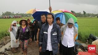 Jokowi Terjang Hujan Deras Tinjau Program Padat Karya