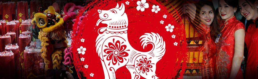 Kedamaian di Tahun Anjing Tanah