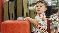 <p>Kyo kayaknya lagi mau traveling nih. Tuh lihat, dia lagi sibuk pilih-pilih koper. (Foto: Instagram/kiranalarasati)</p>