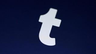 Verizon 'Jual Rugi' Tumblr ke Induk Perusahaan WordPress