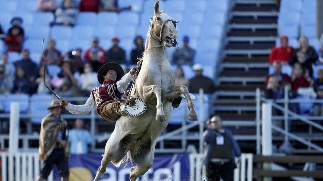 Amerika Selatan seperti Uruguay dan Argentina juga memiliki koboi dalam kebudayaan mereka. Para lelaki penunggang kuda ini disebut guacho.