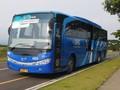 Daftar Tarif Baru Damri Bandara Soekarno-Hatta Berlaku 1 Juli