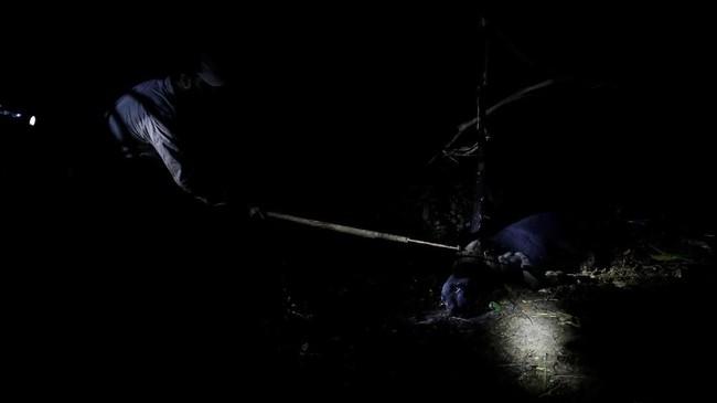Ekspedisi mencari Macan Kumbang dimulai pada malam hari, karena di siang hari Macan Kumbang disebut malu menampakkan dirinya.