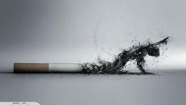 Tak hanya pada perempuan, lelaki yang merokok pun bisa menyebabkan sulit dapat momongan, Bunda.