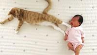 <p>Duh, kasihan si kecil ditendang sama kucingnya. (Foto: Instagram @yuti_mei_maccha)</p>