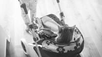 <p>Hmm, enak banget nih si kucing didorong-dorong pakai kereta bayi. Ceritanya, si manis jadi bayi, dan si kecil jadi ibu. Hi-hi-hi. (Foto: Instagram @beata.wereda)</p>