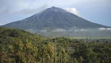 Tutupan Hutan di Jambi Menyusut Hingga Tersisa 900 Ribu Ha