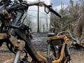 Kronologi Letusan Lumpur di Blora Hilangkan Belasan Kerbau