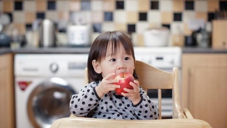 Buah yang merupakan sumber vitamin dan mineral, baik untuk pencernaan dan bisa menjaga daya tahan tubuh si kecil.