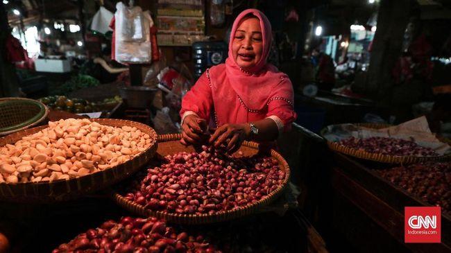 Mentan Syahrul Yasin Limpo memaparkan para penjual bawang takut kehabisan stok jika impor dari China diberhentikan karena virus corona.