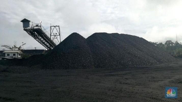 Harga Batu Bara Terjun ke Titik Terendah Dalam 2 Bulan