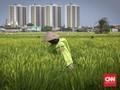 BRI Targetkan Penyaluran KUR Mikro Rp80 Triliun untuk Petani