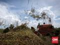 Jokowi Minta Anak Buah Perjelas Jatah Pengelolaan Food Estate