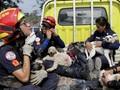 FOTO: Saat Hewan Jadi Korban Erupsi Gunung Fuego