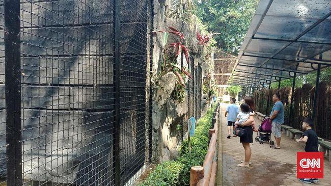 Saat libur Lebaran Kebun Binatang Bandung menambahkan melakukan renovasi wahana dan fasilitas umum.