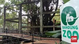 Bonbin Bandung Dibantu Satu Ton Sayur di Tengah Sulit PPKM