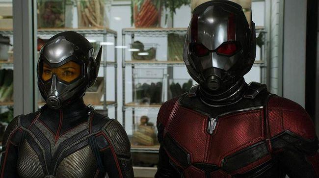Selain Peyton Reed di kursi sutradara, film 'Ant-Man 3' diduga akan menampilkan wajah-wajah lama seperti Paul Rudd sebagai Scott Lang.
