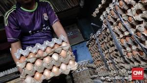 Harga Telur 'Kemurahan', Peternak Banting Rak Dagangan
