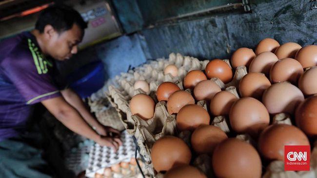 Harga telur ayam dan berbagai jenis sayur di sejumlah daerah meningkat menjelang akhir tahun, karena tingginya permintaan seiring libur Natal dan Tahun Baru.