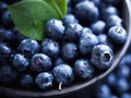 7 Sumber Antioksidan Alami Terbaik