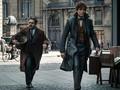 Fan Ungkap Kejanggalan di Kisah 'Fantastic Beasts 2'