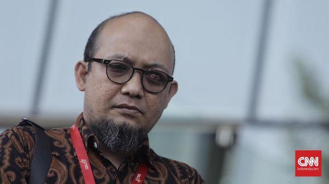 Ombudsman menilai tak ada aturan terkait pembentukan TGPF sehingga lebih setuju kasus Novel Baswedan dituntaskan oleh Polri sebagai penegak hukum.