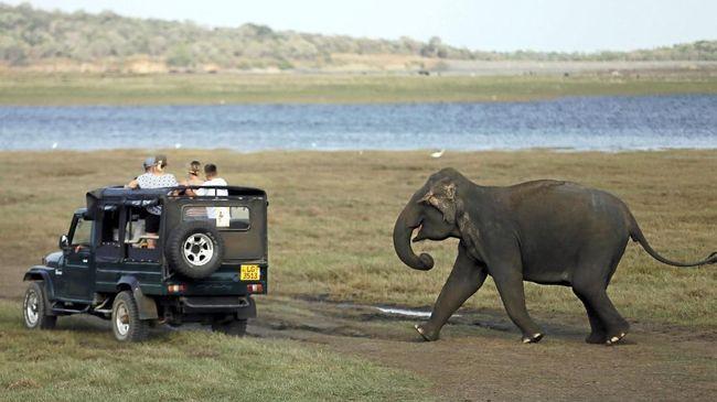 Berikut ini rekomendasi destinasi wisata di penjuru Sri Lanka.