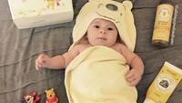 <p>Winnie the Pooh-nya mungil banget. (Foto: Instagram/allthingzpoohandtsums)</p>