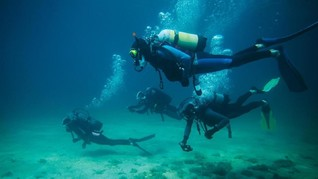 930 Penyelam Wanita Pecahkan Rekor Menyelam Massal Dunia