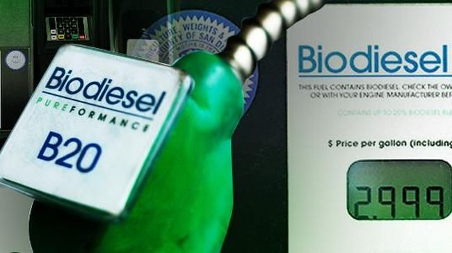 Impor minyak Indonesia menyusut sekitar US$1,66 miliar pada periode Januari-Juli 2019 berkat program B20. Namun, penyaluran biodiesel masih di bawah target.