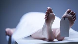 14 Mayat Diduga Dibunuh Kartel Dibuang di Jalanan Meksiko