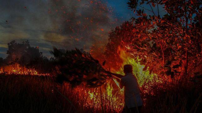 Gubernur, Kapolda Sumatera Selatan, dan Pangdam II/Sriwijaya meneken maklumat bersama dengan ancaman serius bagi para pembakar lahan dan hutan.