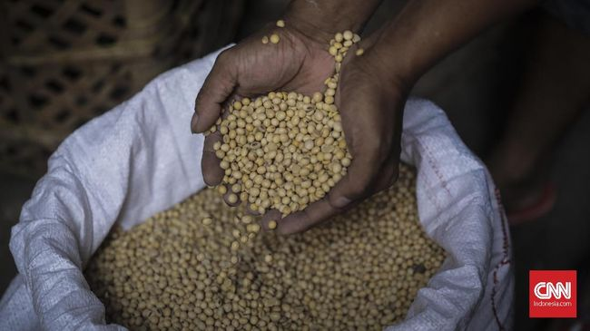 KPPU mencatat harga kedelai di Sumatera Utara melonjak sejak awal Desember 2020 karena kenaikan ongkos kirim dan jadwal pengiriman yang tidak teratur.