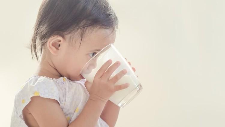 Sistem kekebalan tubuh penting untuk kesehatan si kecil. Berikut ini hal-hal seputar kekebalan tubuh anak yang perlu Bunda tahu.