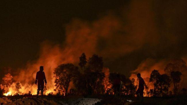 Hutan seluas 8 hektare di Kabupaten Sukabumi, Jawa Barat, terbakar pada Sabtu (9/11). Petugas gabungan yang dibantu relawan SAR berupaya memadamkan api.