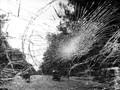 Tabrakan Beruntun Kembali Terjadi di Tol Cipularang KM 91