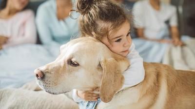 7 Ras Anjing yang Cocok Jadi Hewan Peliharaan Anak