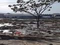 BNPB Sebut Tsunami di Palu Ada yang Capai Ketinggian 6 Meter
