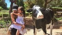 <p>Sarah takut ya sama sapi? Tenang, Nak, ada Bunda Nana yang akan menjagamu. He-he-he. (Foto: Instagram @nanamirdad)<br /><br /></p>