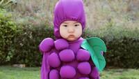 <p>Joey sering jadi media kreatif Bundanya. Salah satunya didandani dengan kostum buah. (Foto: @lauraiz)</p>